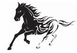 Помой Своего Коня, Автокомплекс
